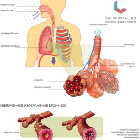 Механизмы лечебного действия солевого аэрозоля